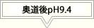 奥道後 壱湯の守 pH9.4